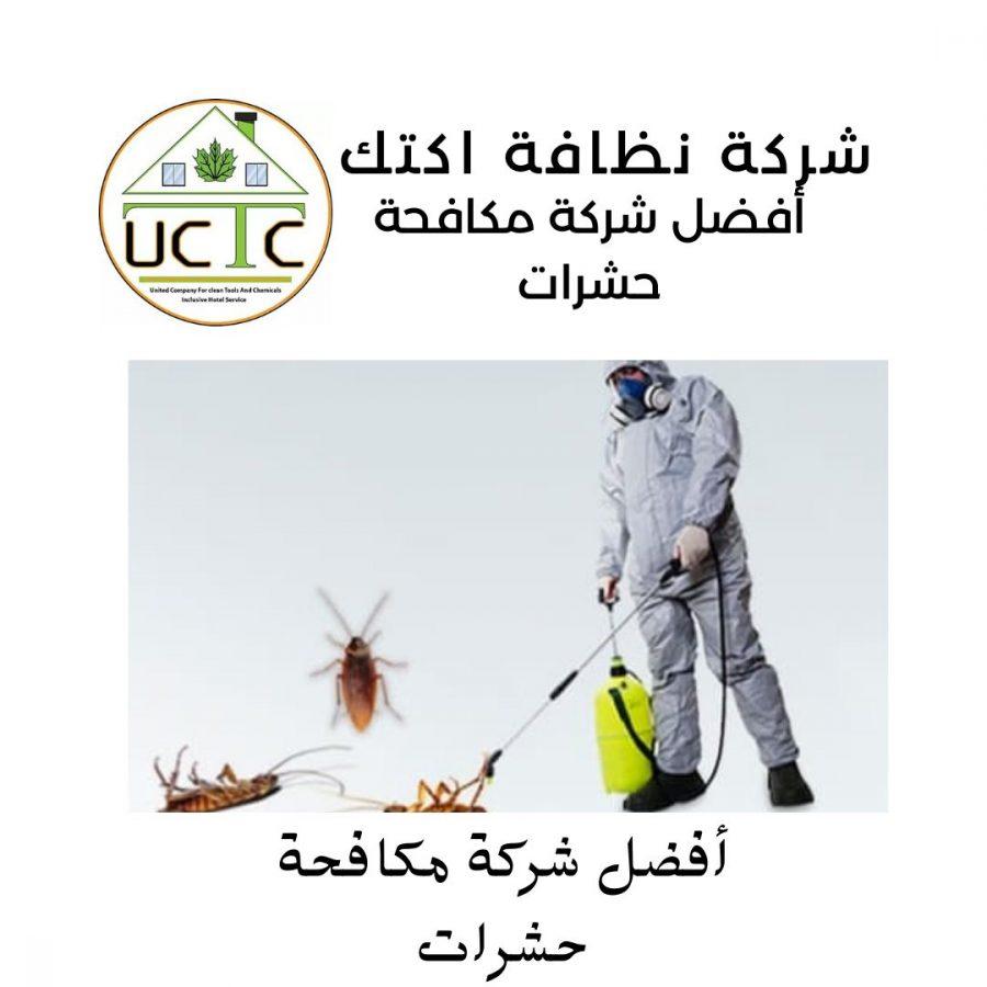 أفضل شركة مكافحة حشرات